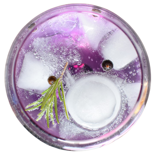 gin-tonic-1859464_960_720-removebg-preview